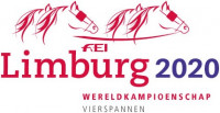 Stichting Limburg 2020